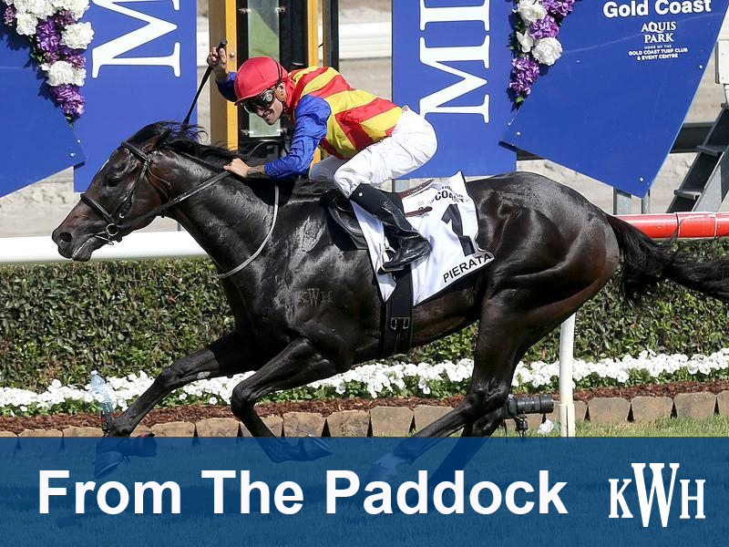 From the Paddock wraps up a massive week on the Gold Coast for Magic Millions week.