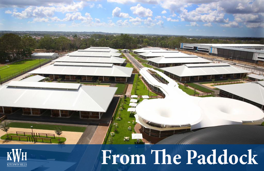 Check out all the latest news in this weeks From The Paddock!