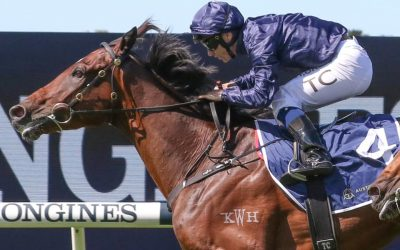 Weekend Acceptances – Group racing continues for Kitchwin Graduates